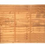 waneylap-panel